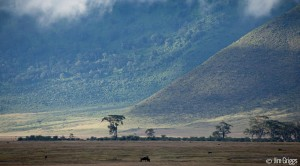 Unique Safaris | Astonishing Tanzania Landscapes